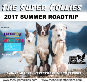 Follow Backseat Barkers The Super Collies on their Ultimate US Road Trip 2017