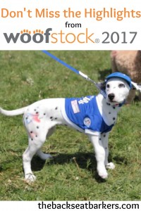 Backseat Barkers coverage of Woofstock 2017