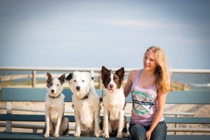 Sara and the Super Collies at the beach in New Jersey