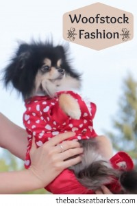 Woofstock Fashion Ruff Stitched Fashion Show