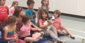 Loki the Super Collie Greeting some adorable kids